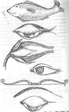 Eyes- Vishnudharmottara
