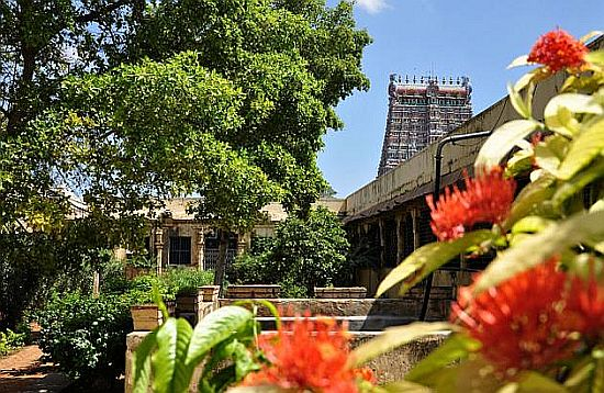 Madurai Temple Graden