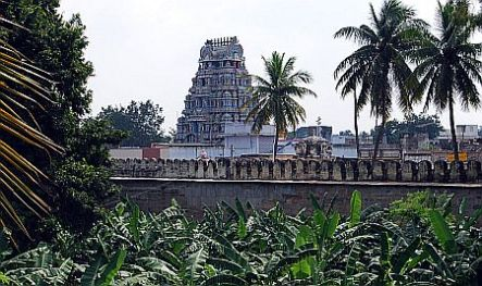 srirangam-temple-garden
