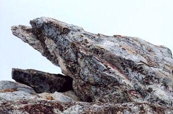 vulture peak.2 jpg
