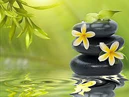 zen-mood-bokeh-garden