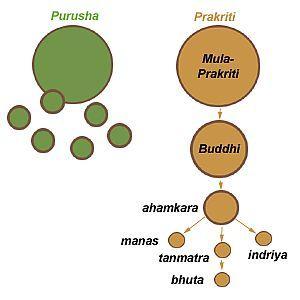 samkhya_principles