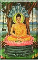 god budhha under banyana tree
