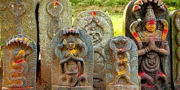 Nag-panchami-Origin-Tithi-Story-and-Celebrations