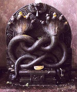 Nagakal, Kukke Subramanya