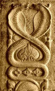 snake-snake-art