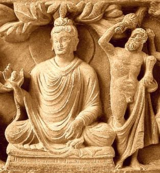 Buddha with hercules Procter