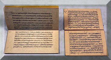 panini sanskrit 2